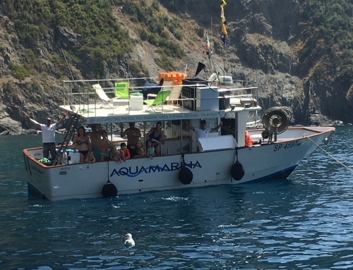 AQUAMARINA BOAT TOURS